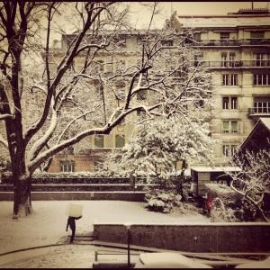 snowymove